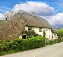A Quaint Little Thatched Cottage by hootonles