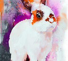 Sunny rabbit by Slaveika Aladjova