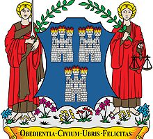 Coat of Arms of Dublin by abbeyz71