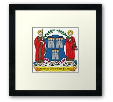 Coat of Arms of Dublin Framed Print