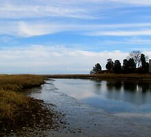Cape Cod salt pond visitor Center 3 by GleaPhotography