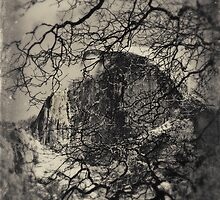 Half Dome Through Oak Limbs: Yosemite, CA., Winter, 2013 by quistphotog