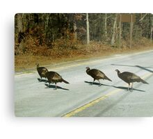 Turkeys crossing the Road Metal Print