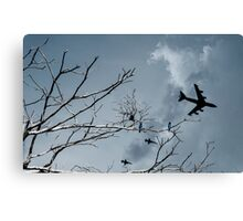 Kingfishers and Planes Canvas Print