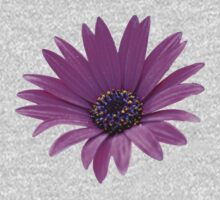 Purple daisy Kids Clothes