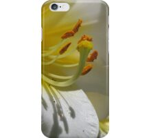 Gorgeous White Lily iPhone Case/Skin