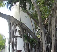 Key West lighthouse and Tree by GleaPhotography