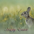 Happy Easter Card by EbyArts
