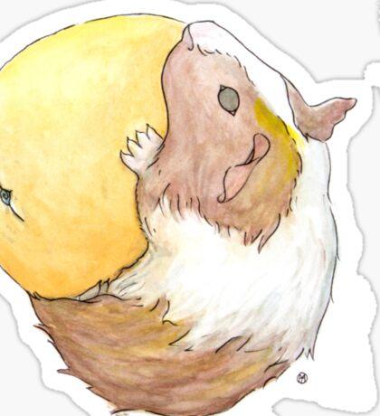 Guinea Pig & Orange Sticker