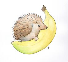 Hedgehog & Banana by Tim Gorichanaz