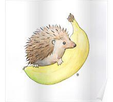 Hedgehog & Banana Poster