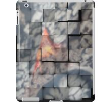Fire 10 iPad Case/Skin