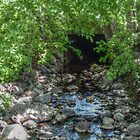 Unusual Brook Tunnel, Caldwell NJ by Jane Neill-Hancock