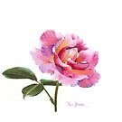 A Single Pink Rose for your iphone or ipod! by Pat Yager