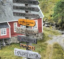For a Challenge ( 2 ) - Signage Into Flåm by Larry Lingard-Davis