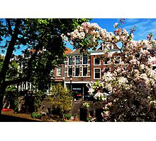 Spring blossoms at Utrecht Photographic Print