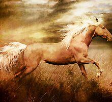 Fleet Palamino Horse by Shanina Conway