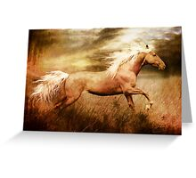 Fleet Palamino Horse Greeting Card