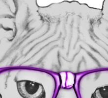 Geeky Nerdy Sphynx Cat with Taped Glasses Sticker