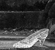 Cinderella's Slipper by LadyEloise