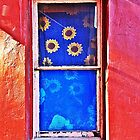 Flowers in the Window © by Ethna Gillespie