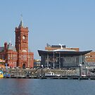 Cardiff Bay by Vicki Spindler (VHS Photography)