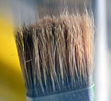 ©HS Paint Brush In Yellow IIA by OmarHernandez
