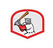 Black Panther Baseball Player Batting Cartoon by patrimonio