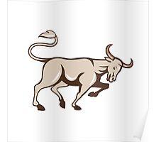 Bull Charging Side Cartoon Poster