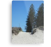 Norfolk Pine! Metal Print
