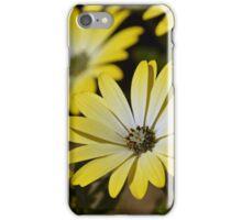 Retro daisies iPhone Case/Skin