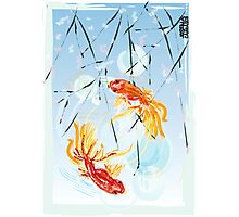 FISHES FENG SHUI Photographic Print