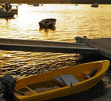 Dinghy Sunset by Michelle Ricketts