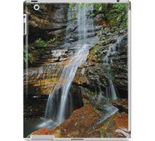 Empress Falls iPad Case/Skin