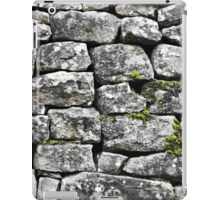 Dry Stone No.1 (2) iPad Case/Skin