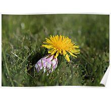 Easter egg hiding under a dandelion Poster