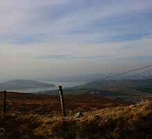 Inch Island From Scalp Mountain by Adrian McGlynn