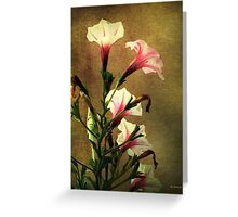 Beauty on a Stalk Greeting Card