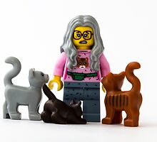 Cat Lady by William Rottenburg