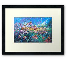 Echinacea Flowers Framed Print