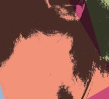 Pop Art Meher Baba Sticker