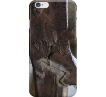 DoveTail iPhone Case/Skin