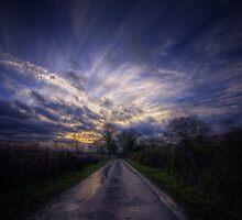 After the Rain by Nigel Bangert
