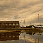 Tollesbury Harbour Boat Shed by Nigel Bangert