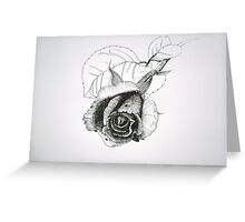 Black and white drawing of a rose Greeting Card