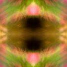 Fragile Fractiles - Unnamed by Henrik Malmborg
