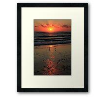 Sunrise With Seagulls Framed Print