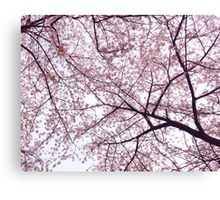 Cherry blossom artistic background art photo print Canvas Print