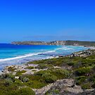 Baudin Beach, Kangaroo Island, South Australia by Margaret  Hyde