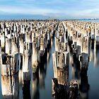 The Historic Princes Pier  by Melissa Dickson